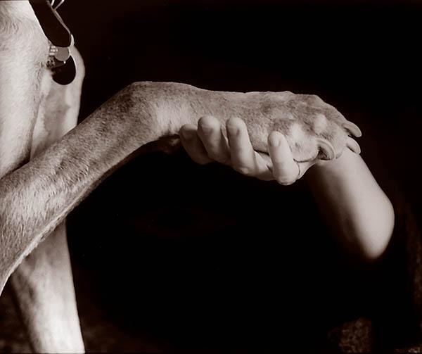 paw_hand